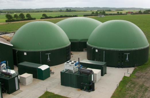 Харьковские ОТГ заинтересовались питомником для разведения биомассы