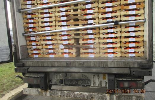 Харьковские псы вынюхали 8 граммов зелья среди тонн хурмы (ФОТО)