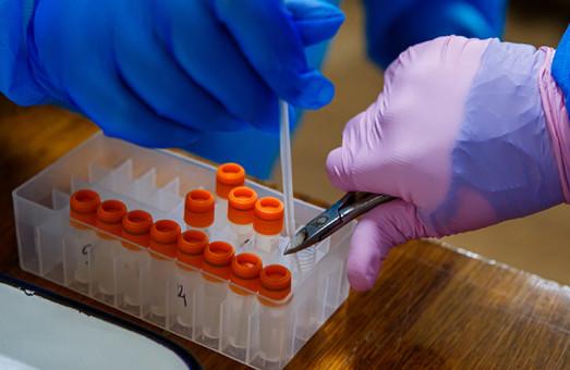 «Британский» штамм коронавируса уже обнаружили в 60 странах