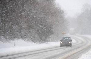 Сильный снегопад оставил более 358 населенных пунктов Украины без электричества
