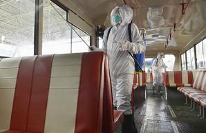 Закрытая КНДР, в которой якобы нет коронавируса, просит о помощи