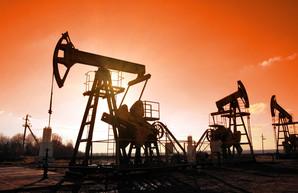 В Украине распродадут нефтегазовые месторождения