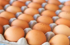 Украинские яйца появятся в Эфиопии