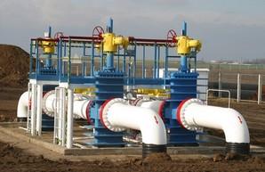 Суд избрал меру пресечения экспертке «трубопровода Медведчука»