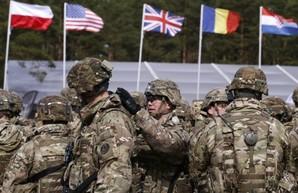США может предложить Украине альтернативу членству в НАТО — Тейлор