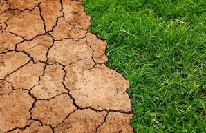 Экологи прогнозируют в Украине рекордно засушливое лето
