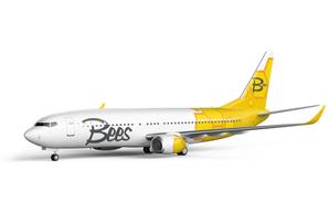 На рынке авиаперевозчиков появился новый украинский конкурент
