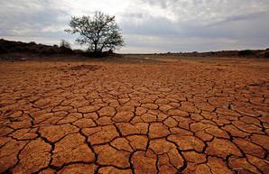 ООН: температура Земли достигла рекордных значений за 3 млн лет