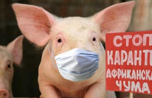 Свинина из Евросоюза в Украине теперь под запретом
