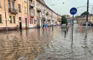 На Львов обрушилась буря: повалены деревья, затоплены улицы