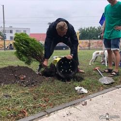 Во Львове открыли лечебный сад для собак